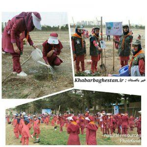 غرس نهال توسط همیاران طبیعت و دانش آموزان مدرسه فاطمه پزشکی نصیرآباد به مناسبت هفته منابع طبیعی