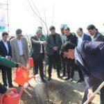 مراسم کاشت و غرس نهال و توزیع نهال بین شهروندان در باغستان