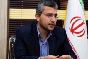 عضو کمیسیون امنیت ملی مجلس