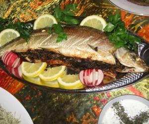 ماهی قزل آلا