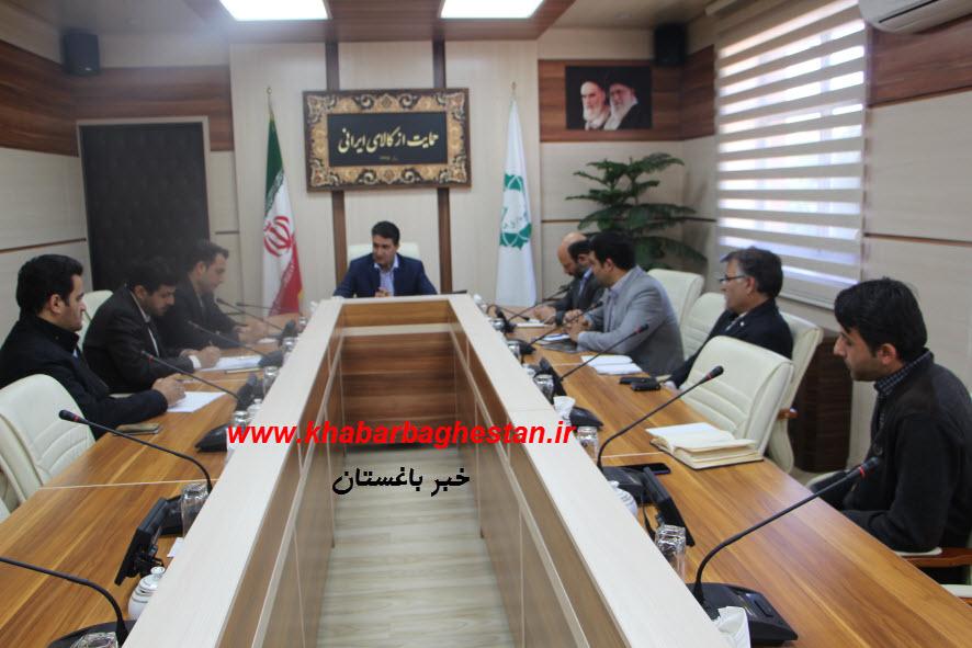جلسه مشترک دکتر رنجبر شهردار باغستان و آقای شکوری رییس شورای اسلامی شهر با ادارات خدمات رسان